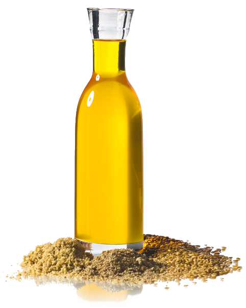 oil_meal